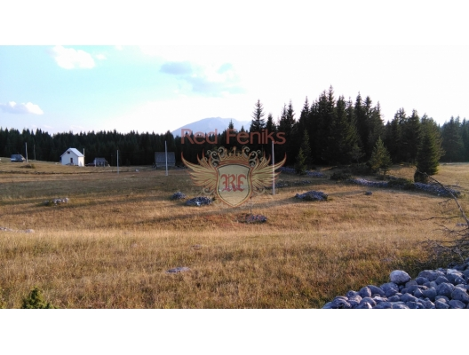 Plot near Tara river, plot in Montenegro for sale, buy plot in Central region, building plot in Montenegro