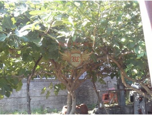 Bijela da Aile Evi, Herceg Novi satılık müstakil ev, Herceg Novi satılık villa