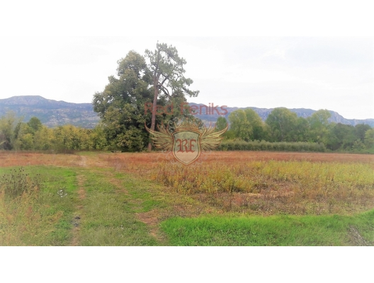 Large estate with a house in Danilovgrad, building land in Central region, land for sale in Cetinje Montenegro