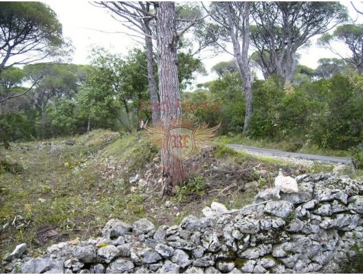 Land For Sale 2000 sq.m., Just 500 Meters From The Sea + Idea Project For a Touristic Apartments Complex in Lustica, Karadağ Arsa Fiyatları, Budva da satılık arsa, Kotor da satılık arsa