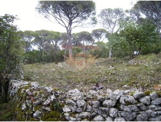 Land For Sale 2000 sq.m., Just 500 Meters From The Sea + Idea Project For a Touristic Apartments Complex in Lustica, Tivat satılık arsa, Herceg Novi satılık arsa