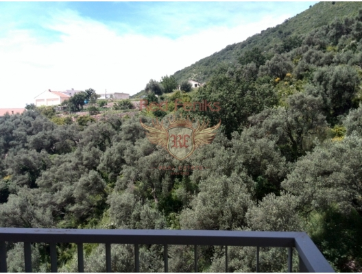 Spacious flat in Petrovac, apartments for rent in Becici buy, apartments for sale in Montenegro, flats in Montenegro sale