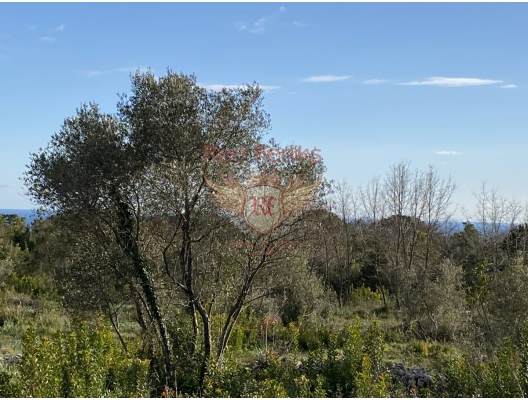 For sale sea view plots in Krimovica, Budva Area of the plots: 508m2 - 30 500 euro 517m2 - 31 000 euro 539m2 - 32 500 euro 577m2 - 34 700 euro 838m2 - 50 300 euro From the all plots opening sea view.
