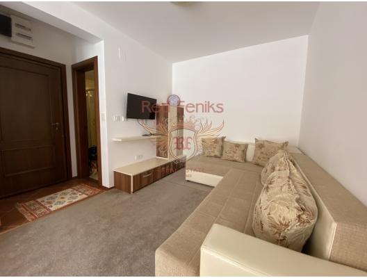 Petrovac'ta Tek Yatak Odalı Daire 1+1, Region Budva da satılık evler, Region Budva satılık daire, Region Budva satılık daireler