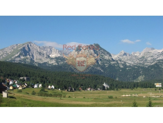 For sale a property of 170,000 square meters, located 30 km away from Zabljak.