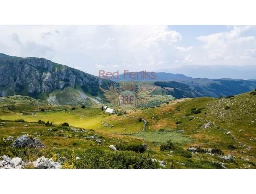 A Large Estate on Zabljak, Montenegro real estate, property in Montenegro, buy land in Montenegro