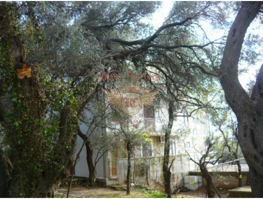 Sv.Stefan yakınında apartman dairesi, Becici dan ev almak, Region Budva da satılık ev, Region Budva da satılık emlak