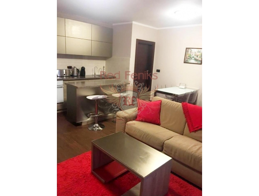 Perfect One Bedroom Apartment In Budva, sea view apartment for sale in Montenegro, buy apartment in Becici, house in Region Budva buy