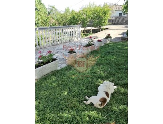 Ulcinj'de Müstakil Ev, Karadağ Villa Fiyatları Karadağ da satılık ev, Montenegro da satılık ev, Karadağ satılık villa